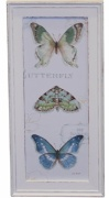 OBRAZ Butterfly Antique White 3